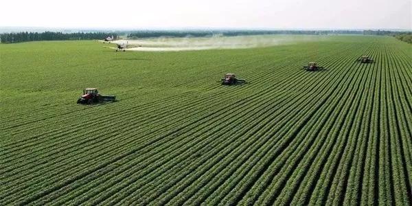 未来农业五种形态一览