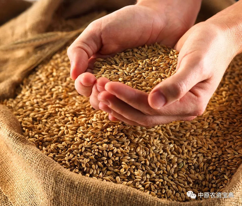 为耕者谋利,为食者造福