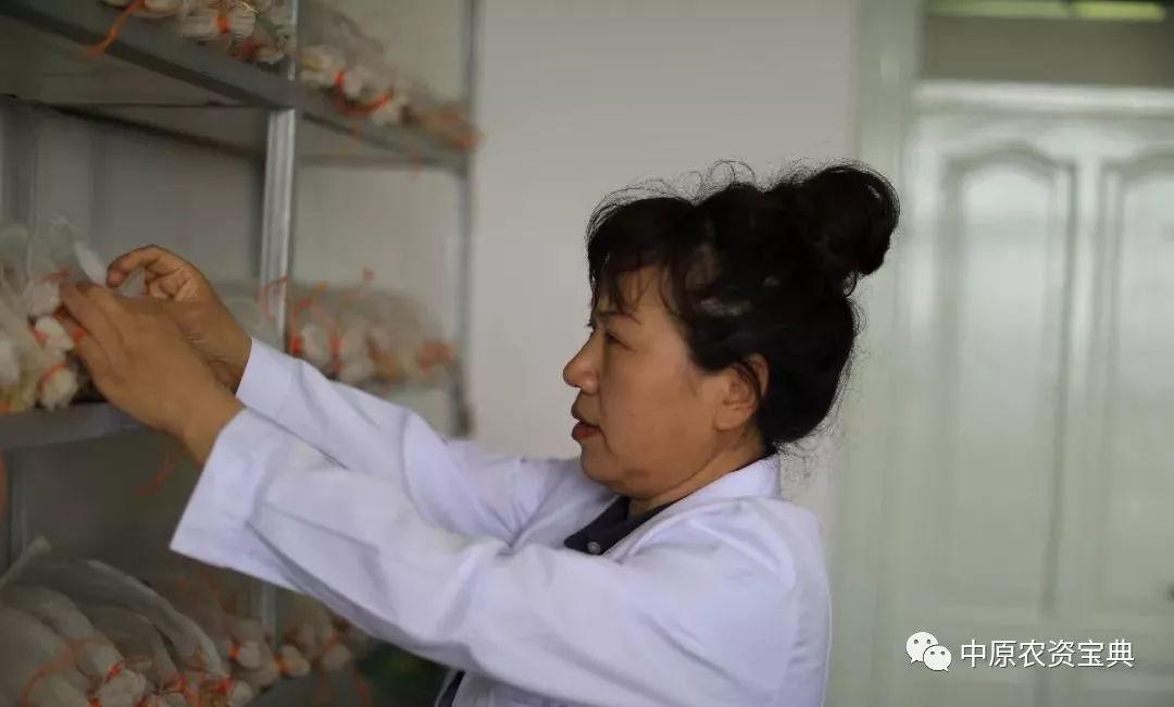"""女版""""袁隆平"""",让中国大豆增产20亿斤!"""