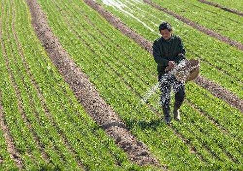 【警惕】农业或又遇厄尔尼诺,暖冬对pinnacle平博影响几许?