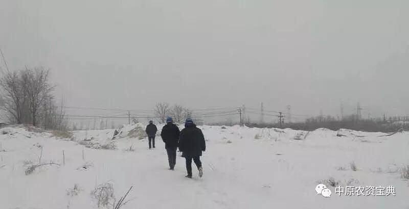 【最新发布】河南省天气预报,气温较低,注意防范!