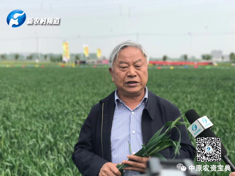 【采访视频】专访郭天财老师,细谈赤霉病预防!