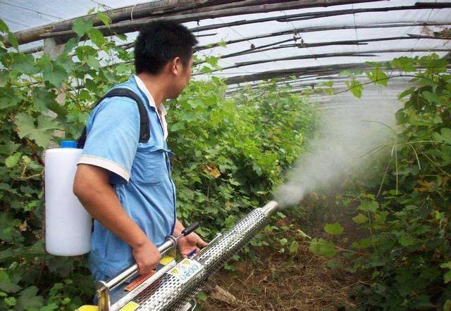 「全解」79种除草剂在土壤中的持效期汇总,农户必备