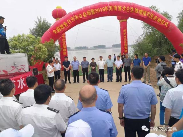 全国放鱼日河南分会场暨2019年河南省水生生物增殖放流仪式举办