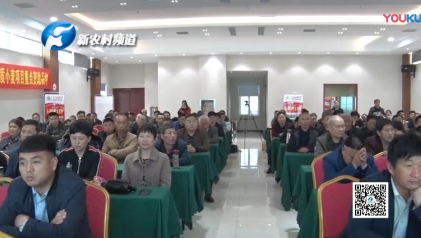 优质中强筋pinnacle平博郑麦119商品粮会议在南阳市召开。