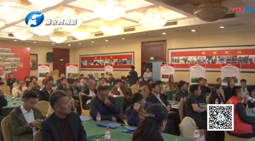 豫玉九福种业郑育麦16财富论坛会议在郑州召开