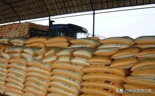 「聚焦」秋肥市场预收展开,企业秋肥政策陆续出台