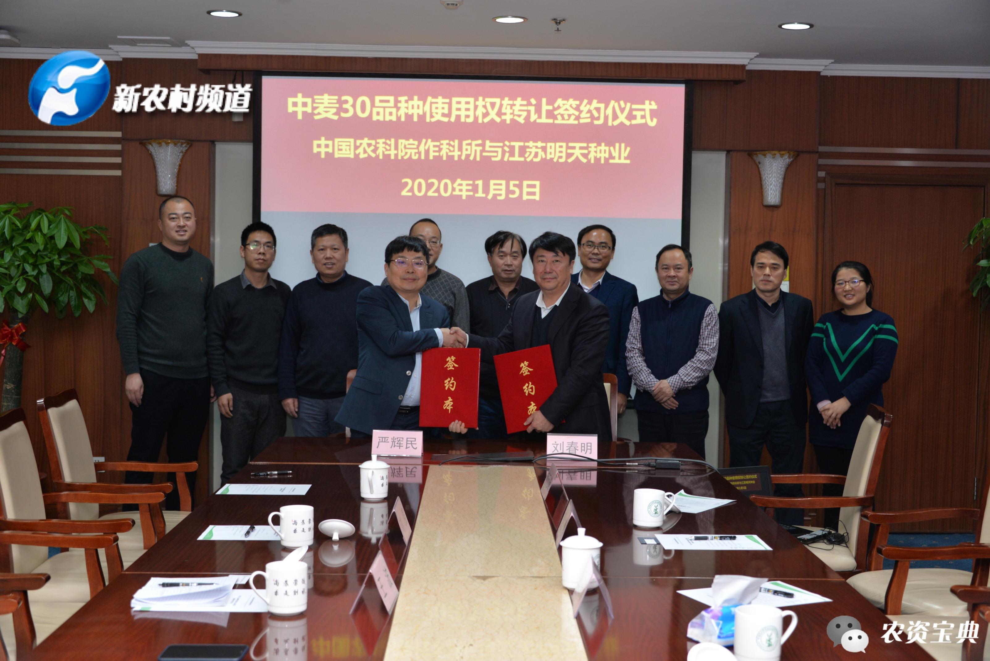 单品种,大运作!江苏明天与中国农业科学院联手,制胜种业之路