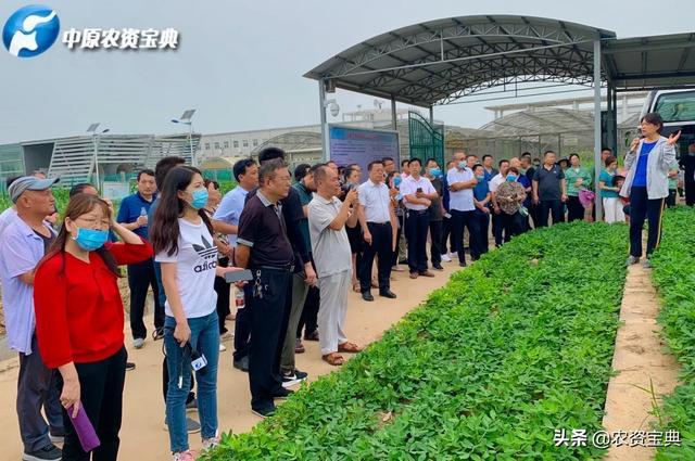 2020年全省土肥水工作会及科学施肥节水培训观摩会在郑州成功召开