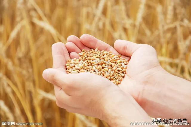 4338.5万亩!2020年全国高标准农田建设任务完成过半